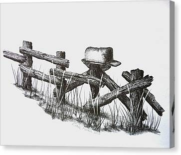 Double Duty Rail Fence Canvas Print by Diane Palmer