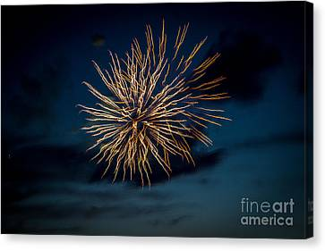 Double Explosion Canvas Print by Robert Bales