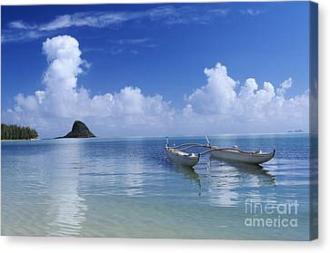 Double Hull Canoe Canvas Print by Joss - Printscapes