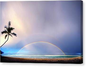 Double Overhead Canvas Print by Sean Davey