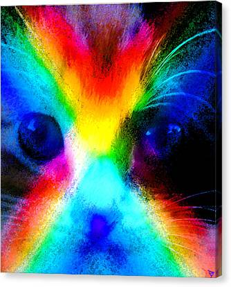 Canvas Print featuring the painting Double Rainbow Cat by David Lee Thompson