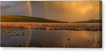 Double Rainbow Light Canvas Print by Leland D Howard