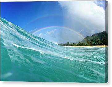 Double Rainbow Canvas Print by Sean Davey