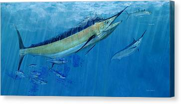 Double Up Marlins Canvas Print by Kevin Brant