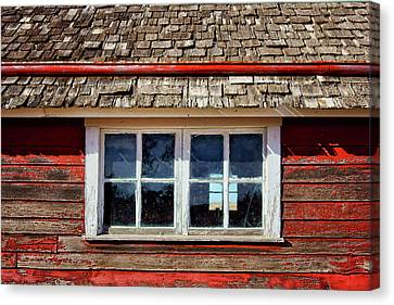 Double Window - Chicken Coop Canvas Print by Nikolyn McDonald
