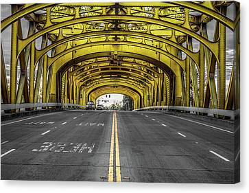Double Yellow Canvas Print by Marnie Patchett