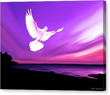 Dove Of My Dreams Canvas Print by Eddie Eastwood