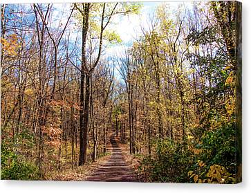 Down A Dirt Road In Autumn Canvas Print by Bill Cannon