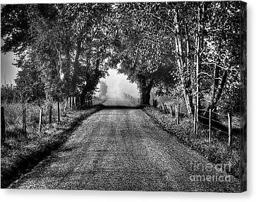 Canvas Print featuring the photograph Down A Lonely Road by Douglas Stucky