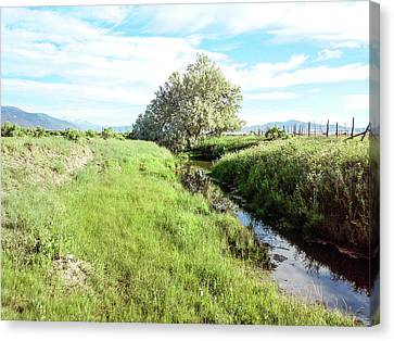 Down By The Creek Canvas Print