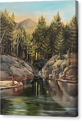 Down By The Pemigewasset River Canvas Print