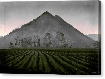Down From The Mountain Canvas Print by Holly Kempe