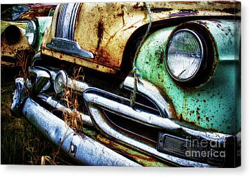 Down In The Dumps 1 Canvas Print by Bob Christopher