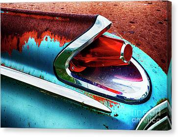 Down In The Dumps 16 Canvas Print by Bob Christopher