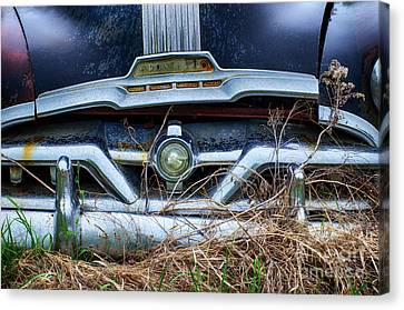 Down In The Dumps 18 Canvas Print by Bob Christopher