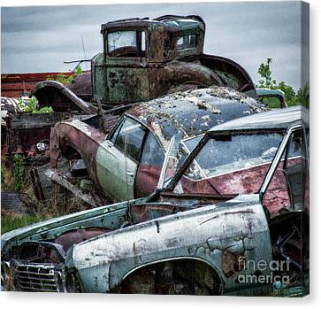Down In The Dumps 3 Canvas Print by Bob Christopher