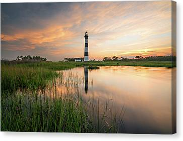Canvas Print featuring the photograph Down In The Swamp by Bernard Chen