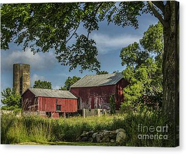 Down On The Farm Canvas Print