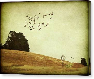 Canvas Print featuring the digital art Down On The Farm by Margaret Hormann Bfa