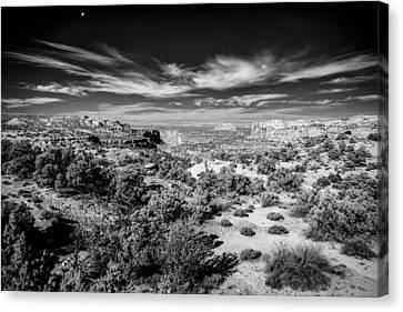 Down Thru The Canyon Canvas Print by Jon Glaser