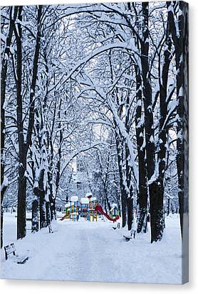 Down To The Park Canvas Print by Rae Tucker