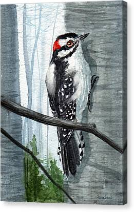 Downey Woodpecker Canvas Print by Sean Seal
