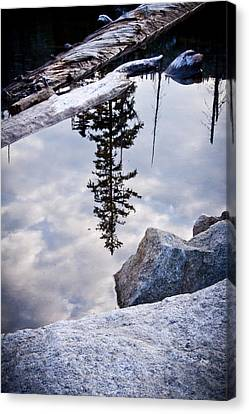Downside Up Canvas Print by Albert Seger