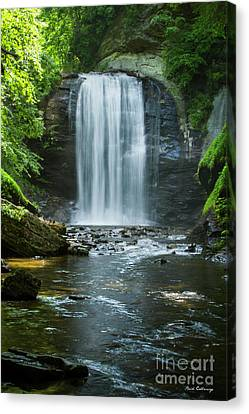 Downstream Shade Looking Glass Falls Great Smoky Mountains Art Canvas Print