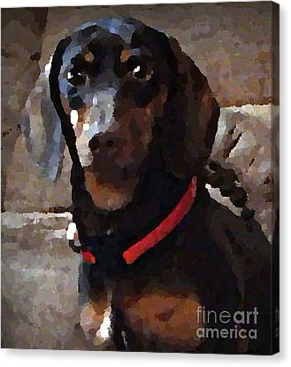 Doxy In Oil Canvas Print