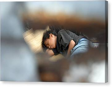 Dozing For As Long As I Can Canvas Print by Jez C Self