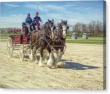 Draft Horse Driving Clinic - Kentucky Horse Park Canvas Print by Tony Crehan