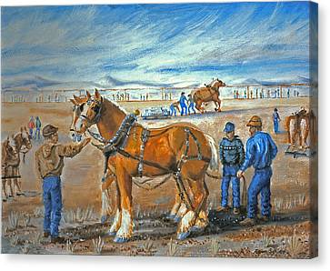 Draft Horse Pull Canvas Print