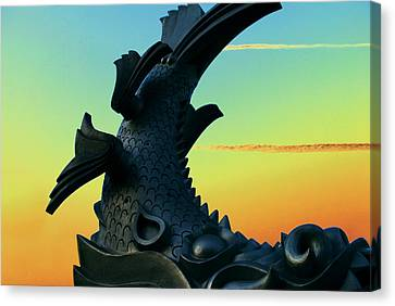Coy Canvas Print - Dragon Fish by Courtney Lively