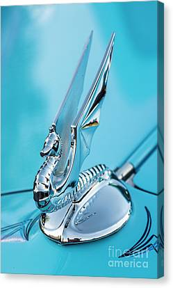 Flying Seahorse Hood Ornament - Classic Car Canvas Print