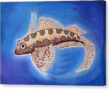Dragonet Fish Canvas Print by Nat Morley