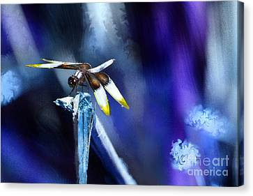Dragonfly In The Blue Canvas Print