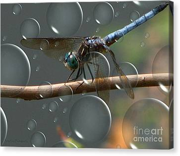 Dragonfly Opera Canvas Print by Roxy Riou