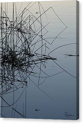 Dragonfly Reflections Canvas Print