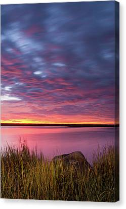 Drama At The Marsh - Vertical Canvas Print