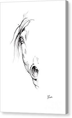 Drawing Of A Horse 2017 02 04 Canvas Print by Angel Tarantella