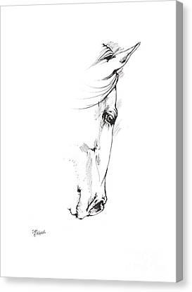 Drawing Of A Horse 2017 02 05 Canvas Print by Angel Tarantella