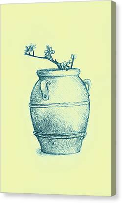 Drawing Of A Tree Branch In A Flower Pot Canvas Print by Oana Unciuleanu