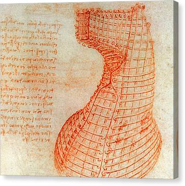 Drawing Of The Ironwork Casting Mould For The Head Of The Sforza Horse Canvas Print by Leonardo Da Vinci