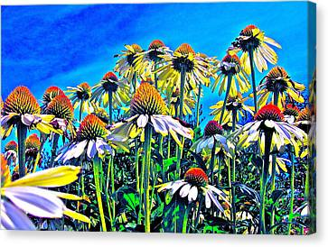 Dream Field Canvas Print by Gwyn Newcombe