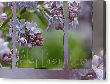 Dream In Color Canvas Print by Tingy Wende