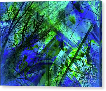 Dream Maker Canvas Print by Francine Collier
