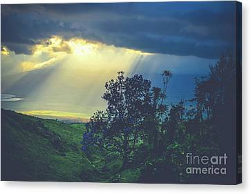 Canvas Print featuring the photograph Dream Of Mortal Bliss by Sharon Mau