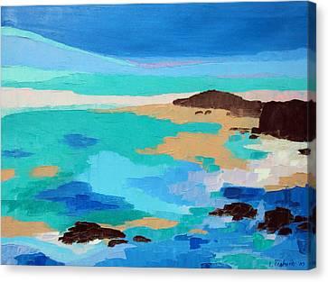Dream Scape 14  Canvas Print by Laura Tasheiko