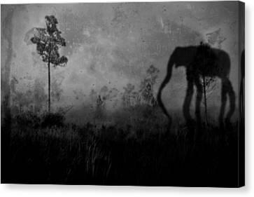 Dream Shadows 5119 Canvas Print