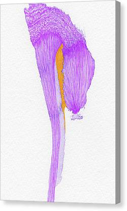 Dream - #ss16dw058 Canvas Print by Satomi Sugimoto
